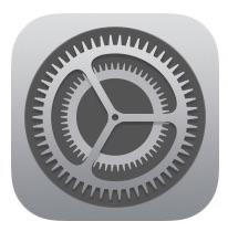 disattivare lo schermo su iPad impostazioni