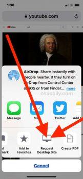 Riprodurre Youtube in background su iOS 3