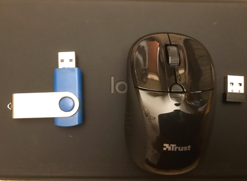 pen drive e mouse bluetooth utilizzati con iPadOS Beta 5 pubblica