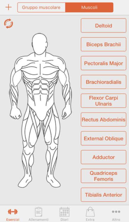 Fitness Point Pro vi permette di allenare ogni singolo muscolo.