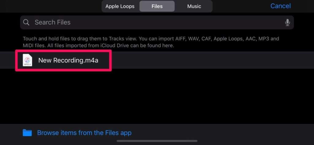 Rendere una registrazione una suoneria su iPhone 8